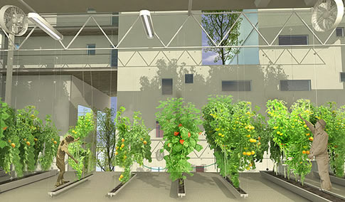 Chinese Design Winner High Rise With Vertical Hydroponics