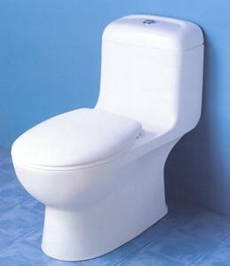 Caroma Caravelle Dual-Flush Toilet