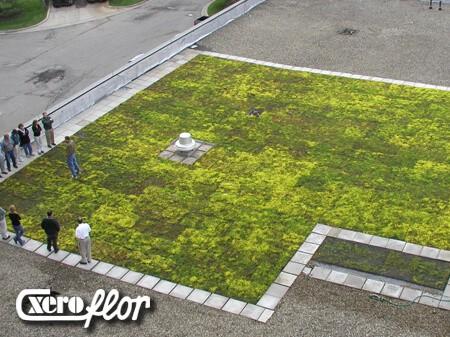 Xero Flor Green Roof
