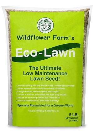 Efficient eco friendly lawn care metaefficient for Best low maintenance grass