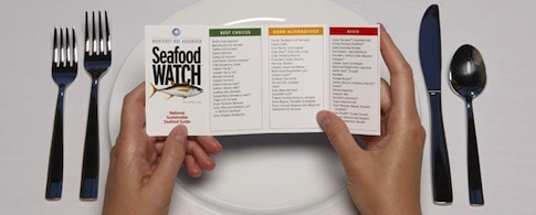 Seafood Watch Reference Guide